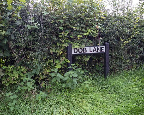 Dob Lane